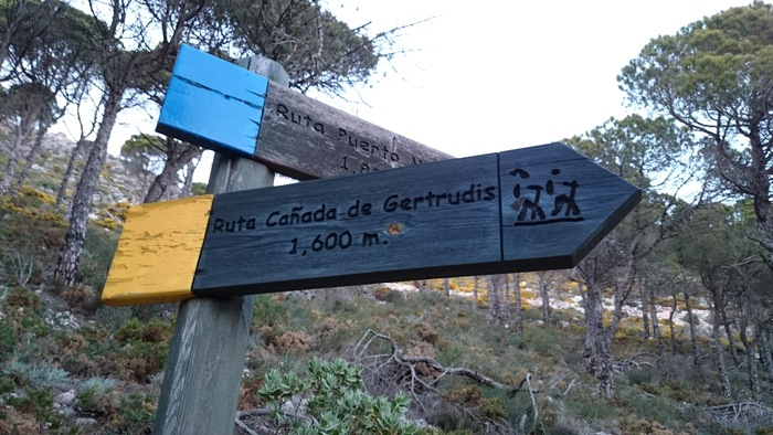 ruta-amarilla-sendero-canada-de-gertrudis