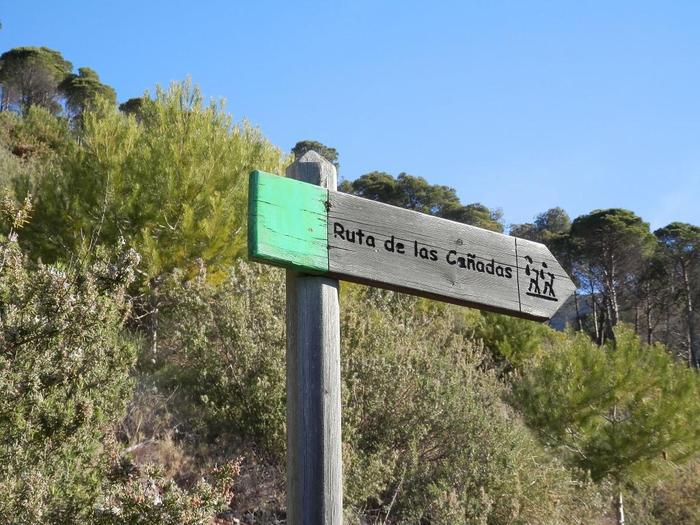 ruta-verde-sendero-de-las-canadas